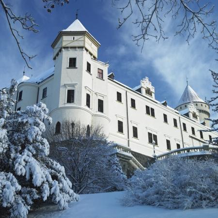 Konopiste Chateau in winter, Czech Republic photo