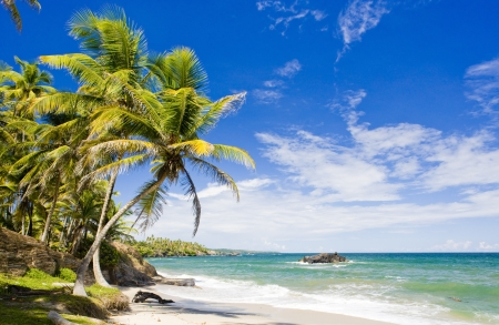 Cumana Bay, Trinité- Banque d'images