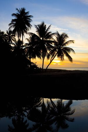 sunset over Caribbean Sea, Turtle Beach, Tobago Stock Photo - 15522124