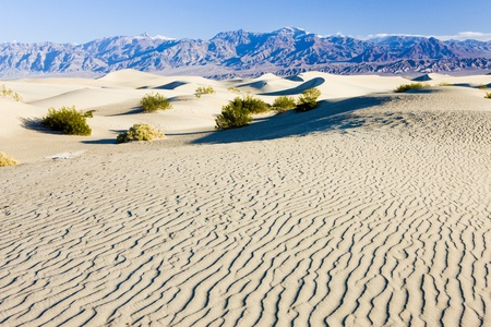 death valley: Stovepipe Wells sand dunes, Death Valley National Park, California, USA