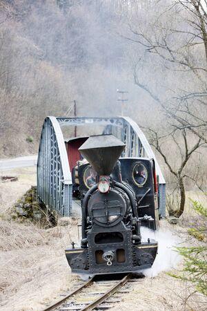 logging railroads: treno a vapore, Ciernohronska Railway, Slovacchia