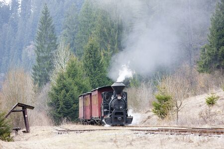 steam train, Ciernohronska Railway, Slovakia Stock Photo - 15371002
