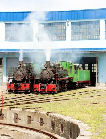 kostolac: steam locomotives in depot, Kostolac, Serbia