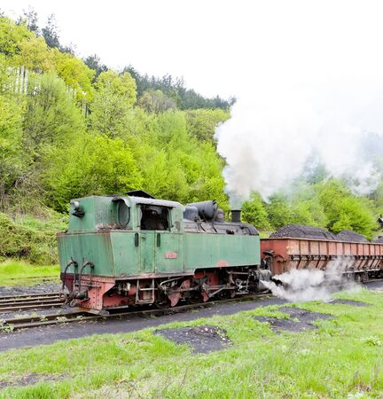 steam freight train, delivery point in Oskova, Bosnia and Hercegovina Stock Photo - 15370966