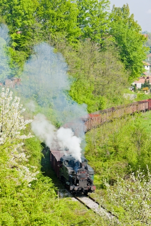 steam freight train, Durdevik, Bosnia and Hercegovina Stock Photo - 15372827