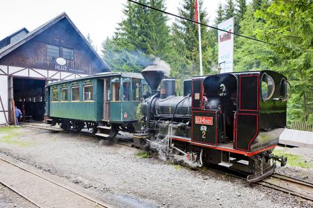 logging railroads: steam locomotives, Museum of Kysuce village, Vychylovka, Slovakia