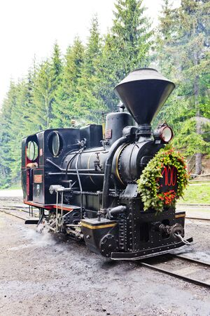 forest railroad: steam locomotive, Museum of Kysuce village, Vychylovka, Slovakia
