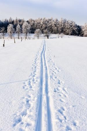 winter landscape: winter landscape, Czech Republic