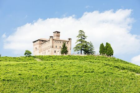 cavour: Grinzane Cavour Castle with vineyard, Piedmont, Italy