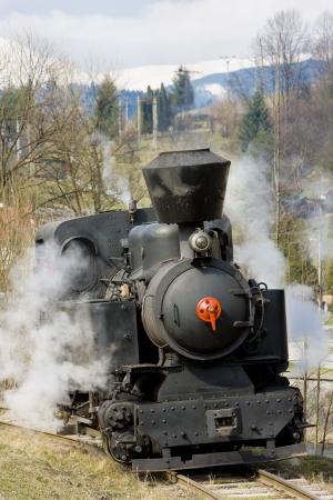 logging railroads: ultimo giorno di servizio di CKD vapore locomotiva n. 5 (1.4.2008), Ciernohronska Railway, Slovacchia Archivio Fotografico