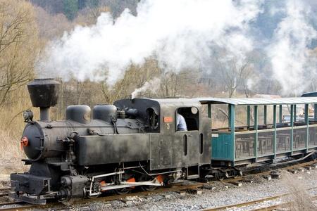 last day of service of CKD steam locomotive n. 5 (1.4.2008), Ciernohronska Railway, Slovakia Stock Photo - 15371009