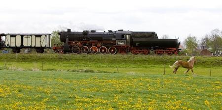 horse traction: steam train, Veendam - Stadskanaal, Netherlands Editorial