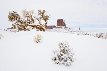 The Mitten, Monument Valley National Park, Utah-Arizona, USA Stock Photo - 15650530