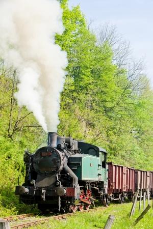 bosna: vapore treno merci, Durdevik, Bosnia-Erzegovina Archivio Fotografico