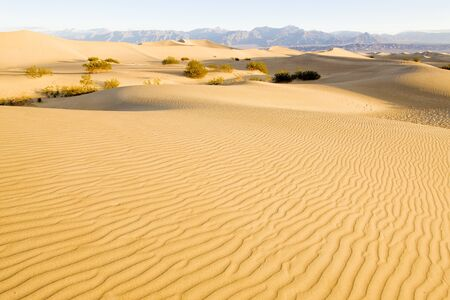 stovepipe: Stovepipe Wells sand dunes, Death Valley National Park, California, USA