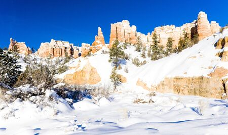 Bryce Canyon National Park in winter, Utah, USA Stock Photo - 16771798