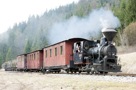 steam traction: steam train, Ciernohronska Railway, Slovakia