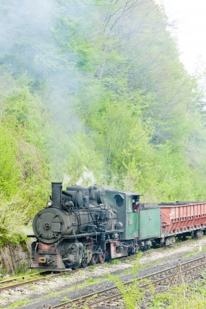 narrow gauge railway, Banovici, Bosnia and Hercegovina Stock Photo - 17175765
