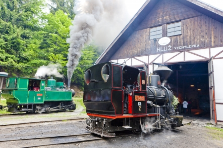 logging railroads: locomotive a vapore, Museo di Kysuce villaggio, Vychylovka, Slovacchia