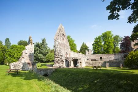 abbey ruins abbey: ruins of Dryburgh Abbey, Scottish Borders, Scotland