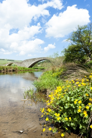 bridge near Stow, Scottish Borders, Scotland Stock Photo - 17174446