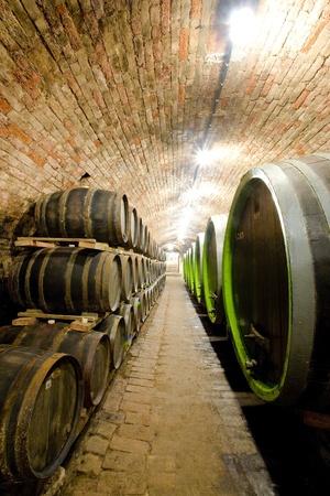 znojmo region: wine cellar, Jaroslavice, Czech Republic