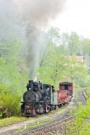 bosnia hercegovina: narrow gauge railway, Banovici, Bosnia and Hercegovina