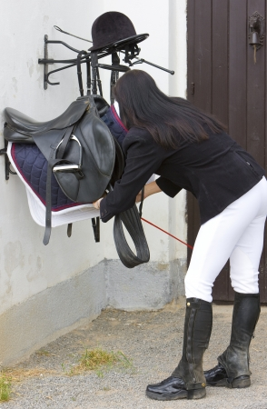 single whip: equestrian with saddle