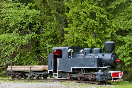 logging railroads: locomotiva a vapore, il Museo di Kysuce villaggio, Vychylovka, Slovacchia Editoriali