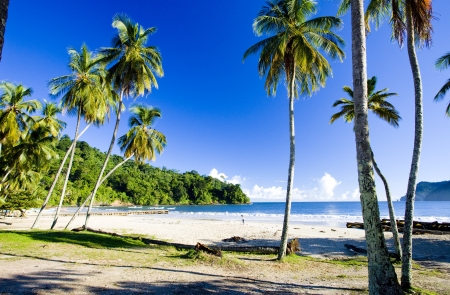 greater: Maracas Bay, Trinidad Stock Photo