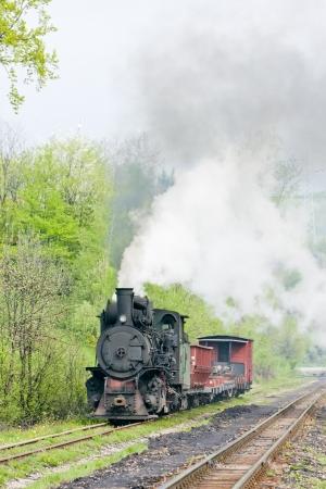 narrow gauge railway, Banovici, Bosnia and Hercegovina Stock Photo - 18639472