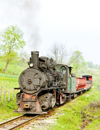 narrow gauge railway, Banovici, Bosnia and Hercegovina Stock Photo - 18639483