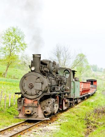narrow gauge railway, Banovici, Bosnia and Hercegovina Stock Photo - 18639483