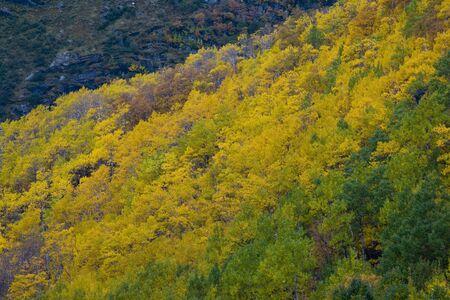 falltime: landscape near Melkevollbreen Glacier, Jostedalsbreen National Park, near Brigsdal, Norway
