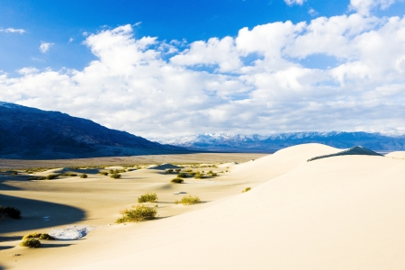 quietness: Stovepipe Wells sand dunes, Death Valley National Park, California, USA