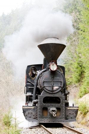 steam locomotive, Ciernohronska Railway, Slovakia Stock Photo - 20431079