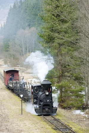narrowgauge: steam train, Ciernohronska Railway, Slovakia