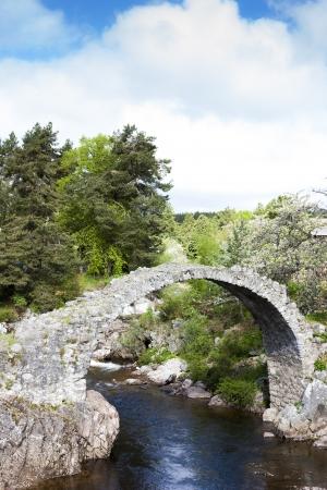 old packhorse bridge: Old Packhorse bridge, Carrbridge, Highlands, Scotland Stock Photo