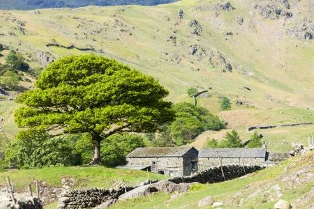 cumbria: landscape of Lake District, Cumbria, England
