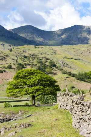 landscape of Lake District, Cumbria, England Stock Photo - 20862375