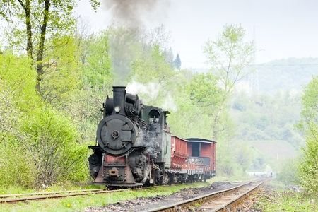 narrow gauge railway, Banovici, Bosnia and Hercegovina Stock Photo - 21921511