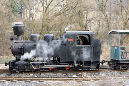 narrowgauge: last day of service of CKD steam locomotive n. 5 (1.4.2008), Ciernohronska Railway, Slovakia