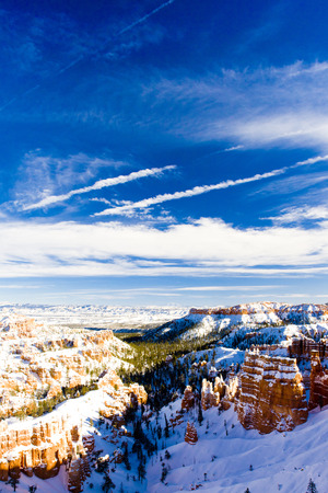 quietness: Bryce Canyon National Park in winter, Utah, USA