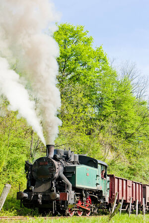 balkan peninsula: steam freight train, Durdevik, Bosnia and Hercegovina