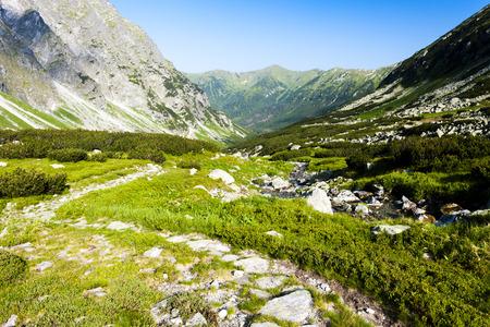 Hlinska Valley, Vysoke Tatry (High Tatras), Slovakia Stock Photo