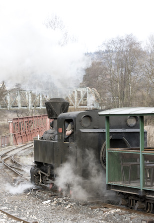 logging railway: last day of service of CKD steam locomotive n. 5 (1.4.2008), Ciernohronska Railway, Slovakia