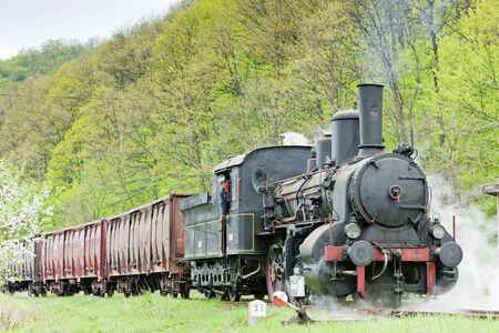 steam freight train (126.014), Resavica, Serbia Stock Photo - 28239620