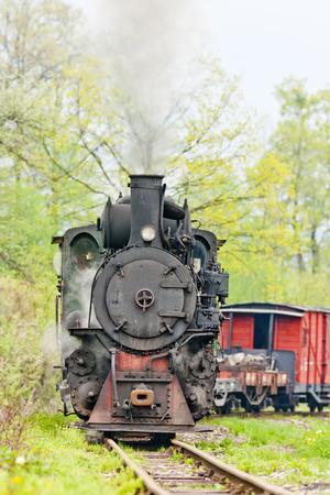 narrow gauge railroad: narrow gauge railway, Banovici, Bosnia and Hercegovina
