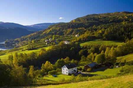 Paesaggio vicino fiordo Ulvik, Norvegia Archivio Fotografico - 28248152