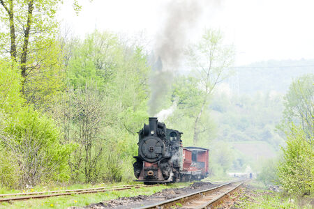 narrow gauge railway, Banovici, Bosnia and Hercegovina Stock Photo - 29286004